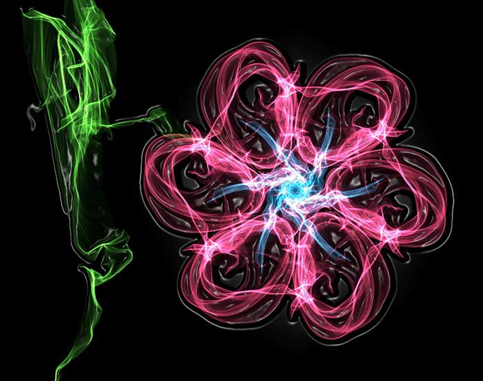 цветок 18авг (700x552, 449Kb)
