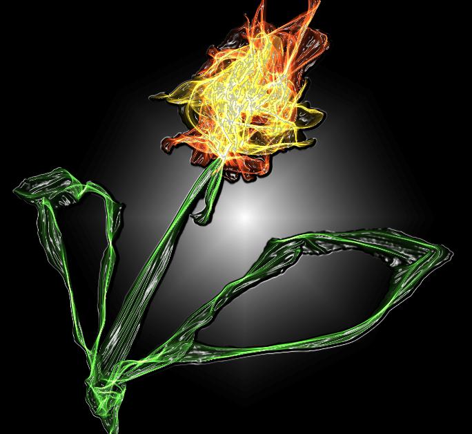 цветок огневой (684x628, 295Kb)