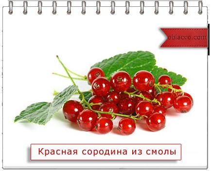 Красная смородина из смолы, глины и фарфора/3518263__3_ (434x352, 146Kb)