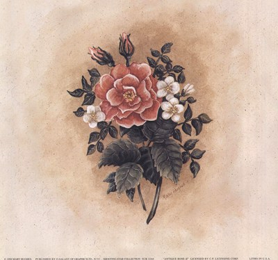antique-rose-ii-by-mary-hughes-103934 (400x374, 118Kb)