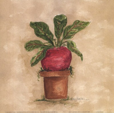 beet-by-mary-hughes-103979 (400x398, 116Kb)