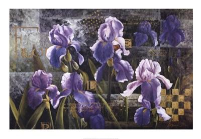 iris-garden-by-meng-57905 (400x278, 111Kb)