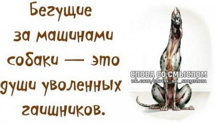 1377070808_1374347195_1374228528_nufk_ulbb40_resize (700x404, 86Kb)