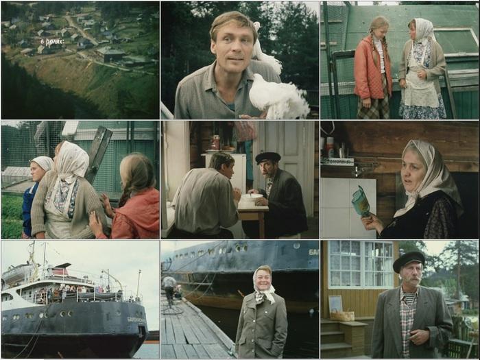 lyubov-i-golubi-dvd-komediya-1984_kadr-373 (700x525, 140Kb)