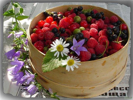 ягоды (540x409, 63Kb)