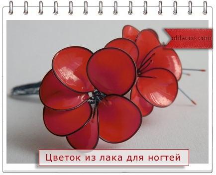 Цветы из лака для ногтей. Видео мастер класс/3518263__1_ (434x352, 182Kb)