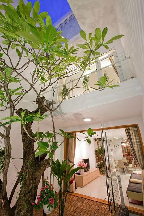 дерево в интерьере квартиры фото (466x700, 287Kb)