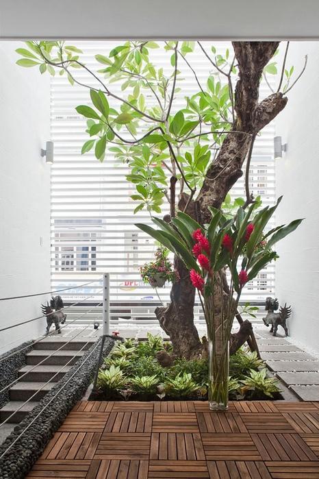 дерево в интерьере квартиры фото 3 (466x700, 278Kb)