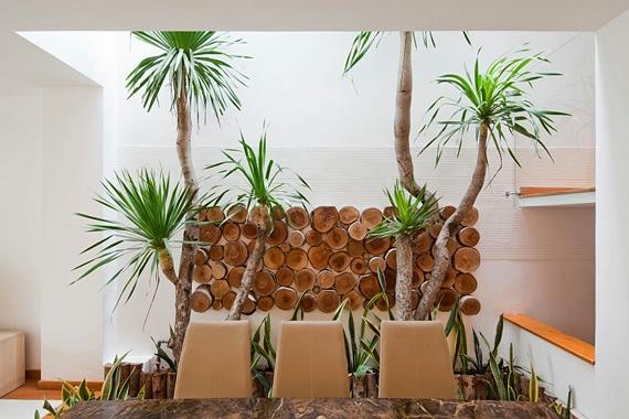 дерево в интерьере квартиры фото 5 (570x380, 148Kb)
