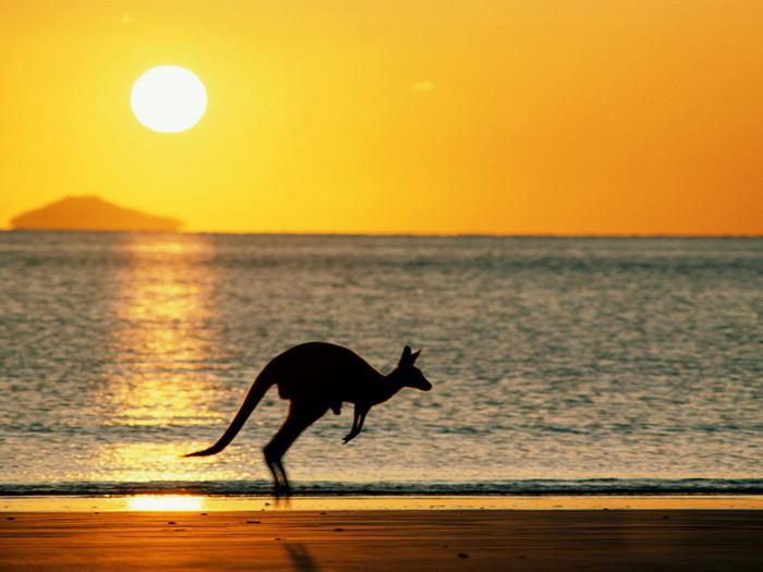 priroda_australia-11 (700x525, 75Kb)