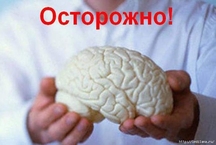 3925311_mozgi_1_ (700x472, 134Kb)