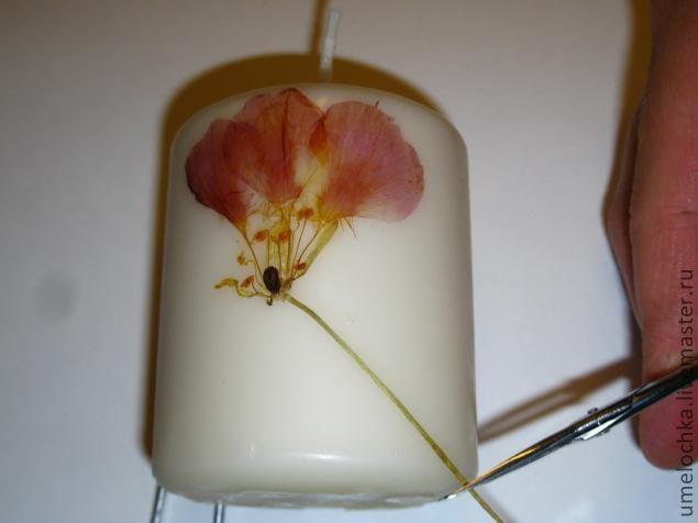 свечи с сухоцветами (6) (635x476, 76Kb)