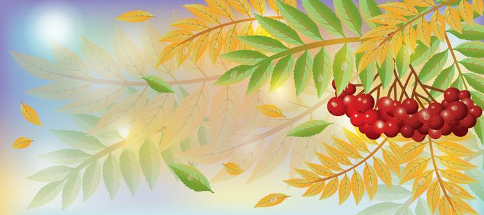 клипарт листья осень: