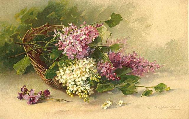 Flowers117 (640x406, 192Kb)