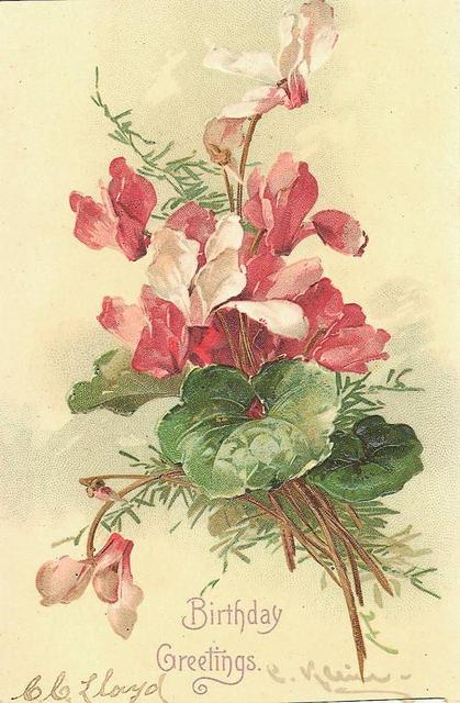 Flowers134 (419x640, 186Kb)