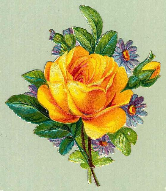 Flowers144 (558x640, 252Kb)