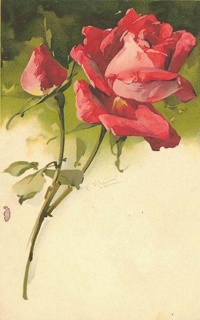 Flowers149 (399x640, 142Kb)