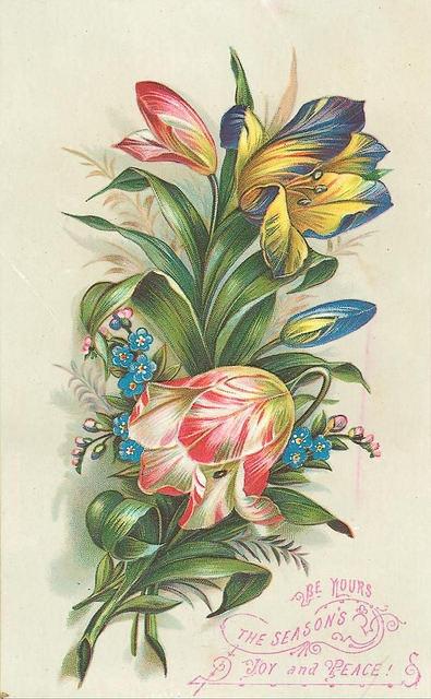 Flowers154 (395x640, 189Kb)