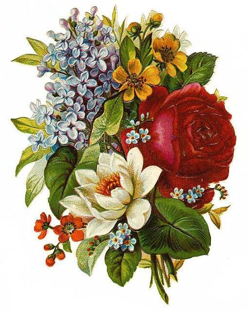 Flowers162 (510x640, 253Kb)