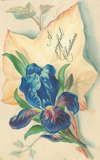Flowers170 (400x640, 193Kb)