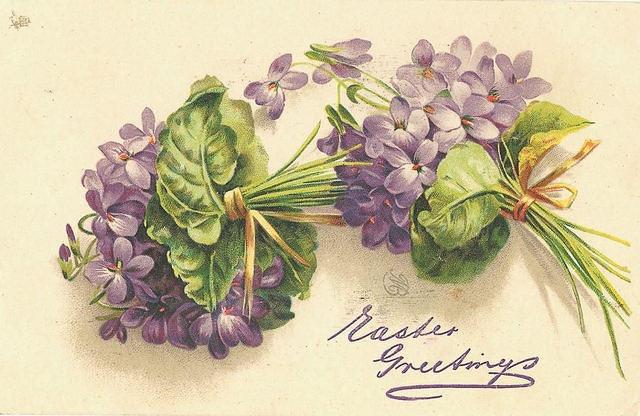 Flowers180 (640x416, 190Kb)