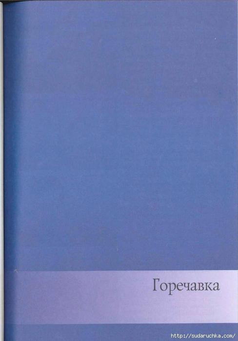 sidorova_g_i_cvetochnye_fantazii_20 (488x700, 179Kb)