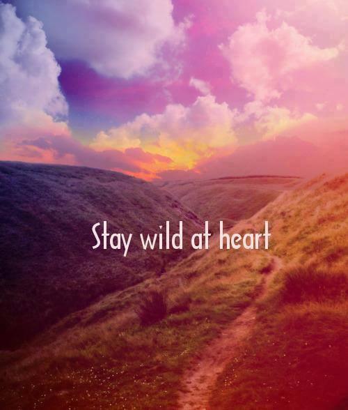 1175921_stay_wild (500x588, 34Kb)