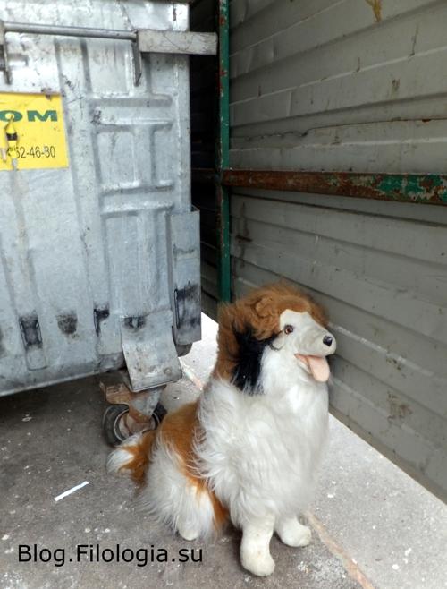 Собака на фоне мусорного бака/3241858_hund02_1_ (500x658, 236Kb)