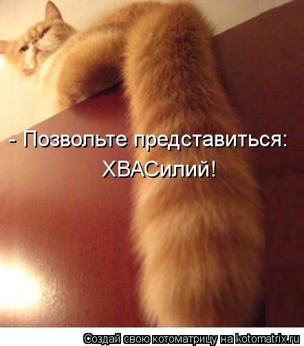 kotomatritsa_cn (442x504, 147Kb)