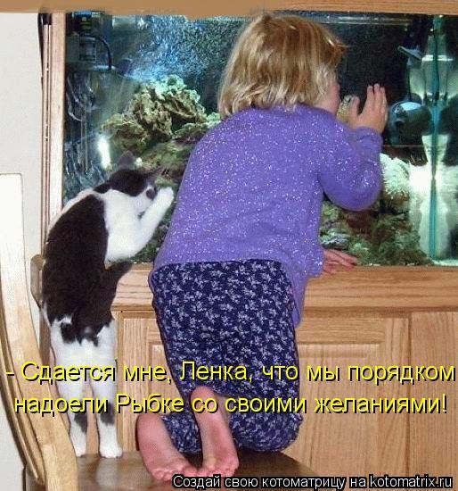 kotomatritsa_yk (514x550, 298Kb)