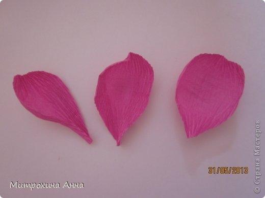 английская роза из конфет мастер-класс (15) (520x390, 53Kb)