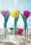 Превью Цветы из креповой (гофрированной) бумаги - журнал (16) (483x700, 235Kb)