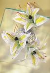 Превью Цветы из креповой (гофрированной) бумаги - журнал (30) (483x700, 250Kb)