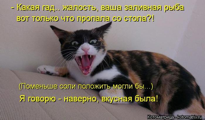 kotomatritsa_XxM (700x410, 283Kb)