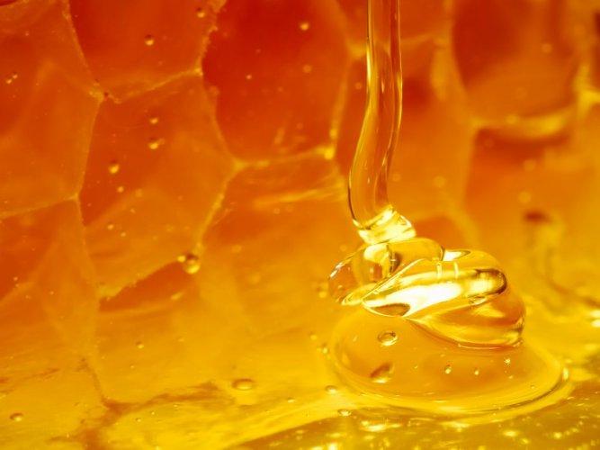 медовая вода от паразитов