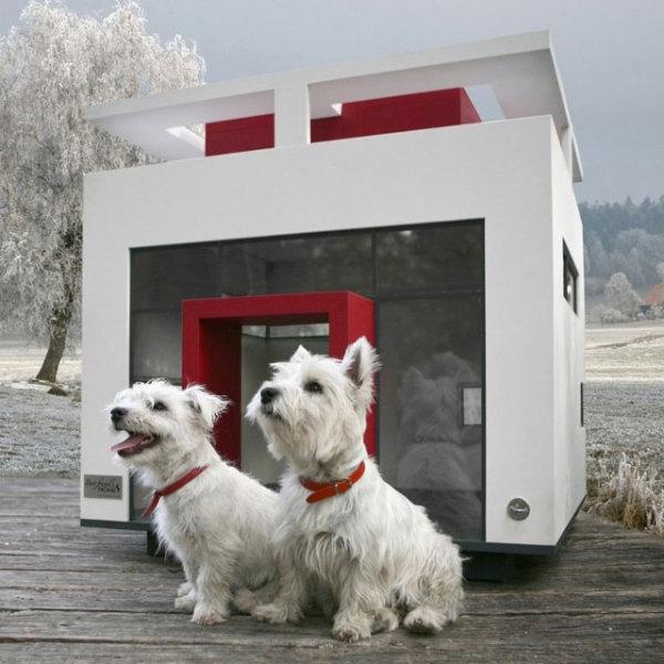 домики для собак фото 1 (600x600, 168Kb)