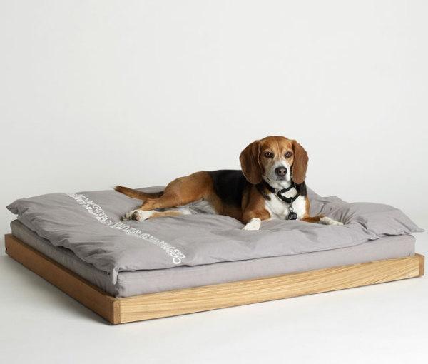 лежанки для собак фото 4 (600x510, 79Kb)