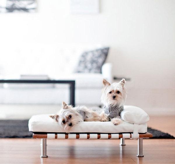 лежанки для собак фото 6 (600x562, 104Kb)