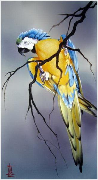parrot (329x600, 156Kb)