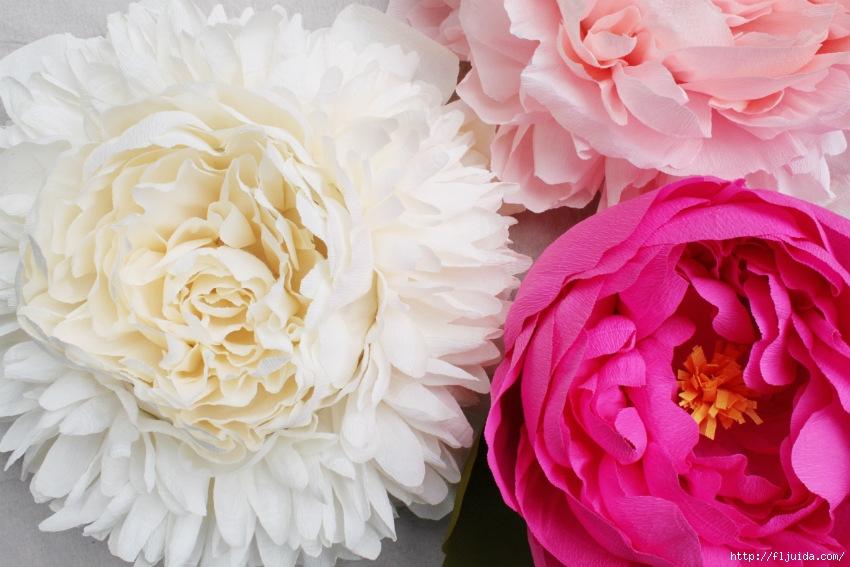 Огромные бумажные цветы мастер класс
