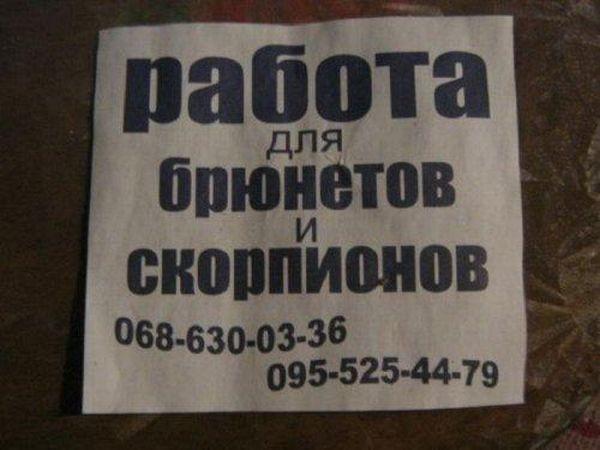 38efb237e4fda1235a1b429af475cb6b (600x450, 110Kb)