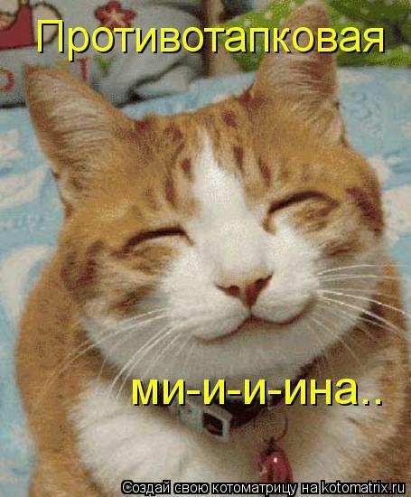 kotomatritsa_L (455x550, 119Kb)