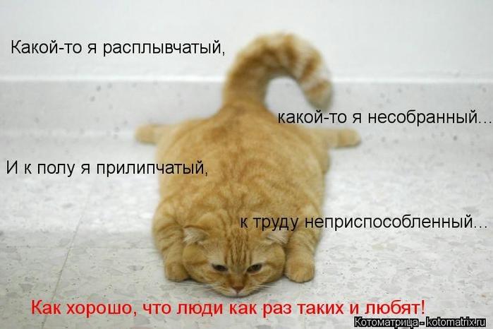 kotomatritsa_km (700x466, 178Kb)