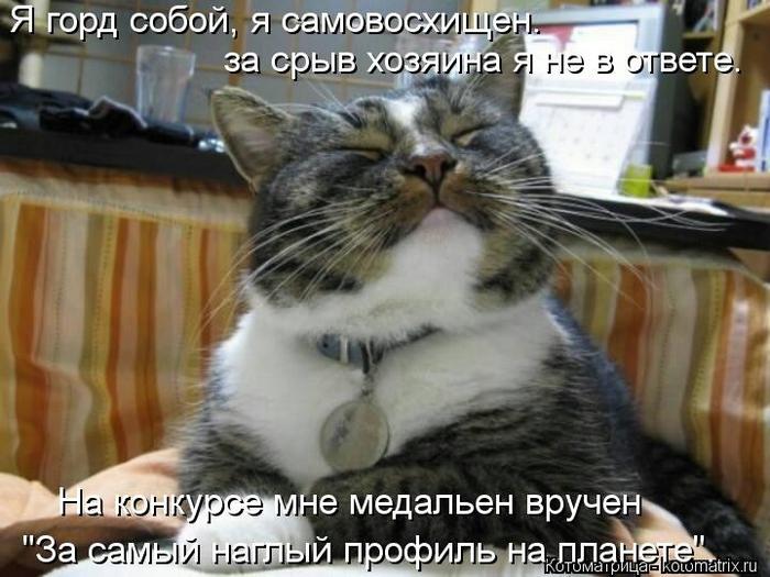 kotomatritsa_mu (700x525, 243Kb)
