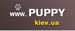 logo_puppy (262x108, 8Kb)