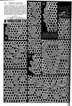 Превью 046 (478x700, 325Kb)