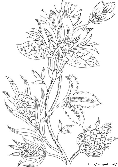 Paisley Coloring Pages For Adults