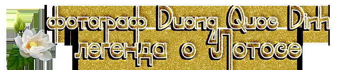 3166706_23456789 (700x143, 183Kb)