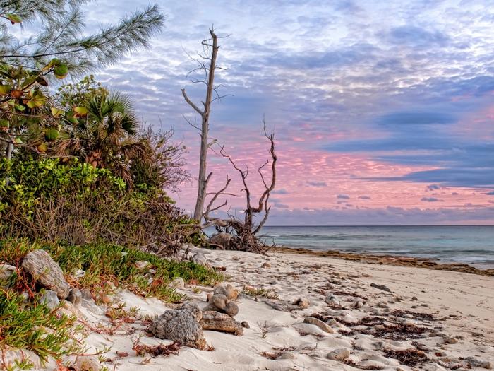 Красивый морской пейзаж1 (700x525, 351Kb)