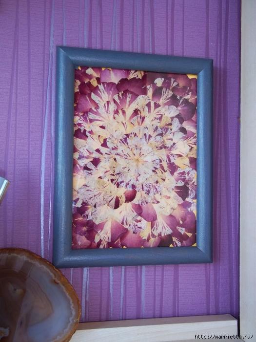 Декорирование сухими лепестками цветов (3) (525x700, 276Kb)